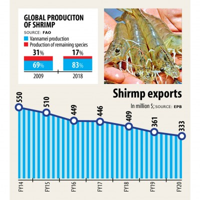 バングラデシュではえびの輸出が隆盛